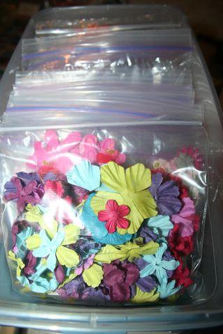 Cabinetflowers