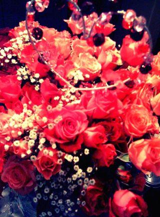 2.14flowers